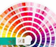 Pantone Color Chart(C)