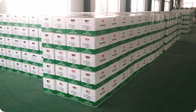 powder coating packing