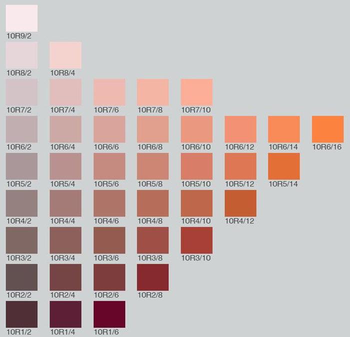 Munsell Color Card 10R1/2 10R1/4 10R1/6 10R2/2 10R2/4 10R2/6 10R2/8 10R3/2 10R3/4 10R3/6 10R3/8 10R3/10 10R4/2 10R4/4 10R4/6 10R4/8 10R4/10 10R4/12 10R5/2 10R5/4 10R5/6 10R5/8 10R5/10 10R5/12 10R5/14 10R6/2 10R6/4 10R6/6 10R6/8 10R6/10 10R6/12 10R6/14 10R6/16 10R7/2 10R7/4 10R7/6 10R7/8 10R7/10 10R8/2 10R8/4 10R9/2