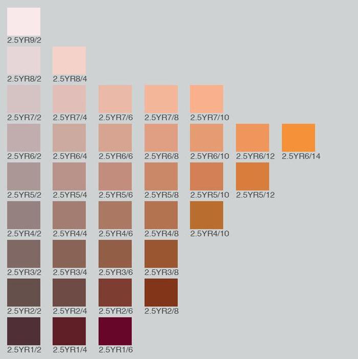 Munsell Color Card 2.5YR1/2 2.5YR1/4 2.5YR1/6 2.5YR2/2 2.5YR2/4 2.5YR2/6 2.5YR2/8 2.5YR3/2 2.5YR3/4 2.5YR3/6 2.5YR3/8 2.5YR4/2 2.5YR4/4 2.5YR4/6 2.5YR4/8 2.5YR4/10 2.5YR5/2 2.5YR5/4 2.5YR5/6 2.5YR5/8 2.5YR5/10 2.5YR5/12 2.5YR6/2 2.5YR6/4 2.5YR6/6 2.5YR6/8 2.5YR6/10 2.5YR6/12 2.5YR6/14 2.5YR7/2 2.5YR7/4 2.5YR7/6 2.5YR7/8 2.5YR7/10 2.5YR8/2 2.5YR8/4 2.5YR9/2